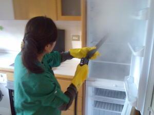Attrezzature per la pulizia - Generatore di vapore